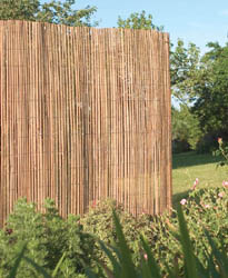 Bamboo Screening Fence