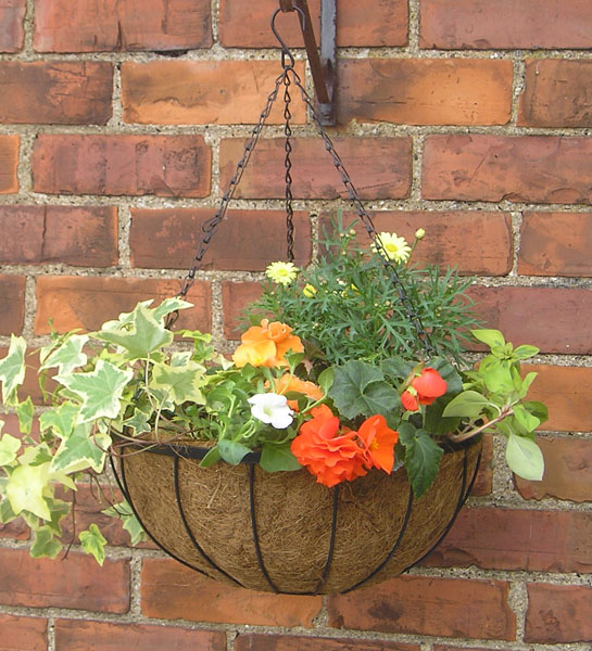 Range Flower Baskets : Uk farm supplies quot flower hanging basket classic range